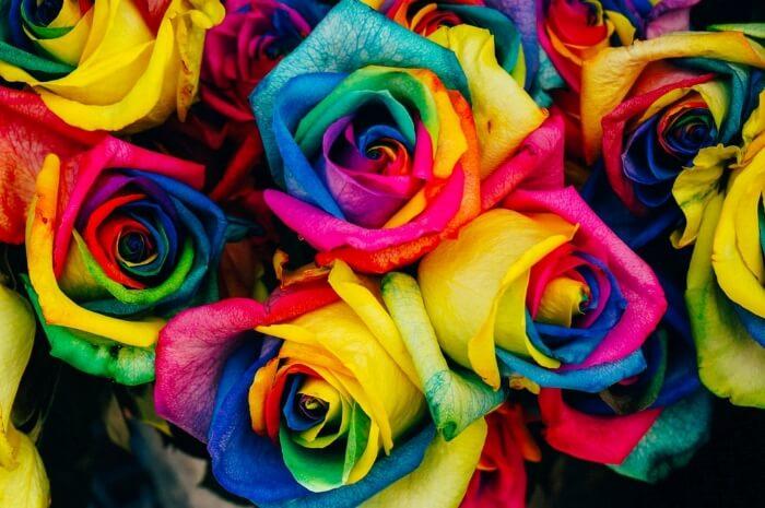 Màu sắc có ảnh hưởng đến cảm xúc và tâm trạng?