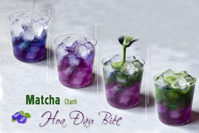 trà hoa đậu biếc tươi matcha