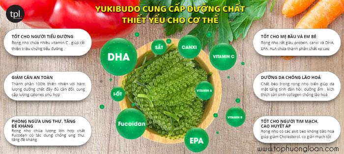 Công dụng của rong nho Yukibudo